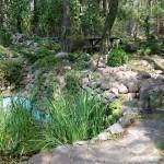 Zieleń na 'Leśnej Polanie'