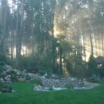 Poranek na 'Leśnej Polanie'
